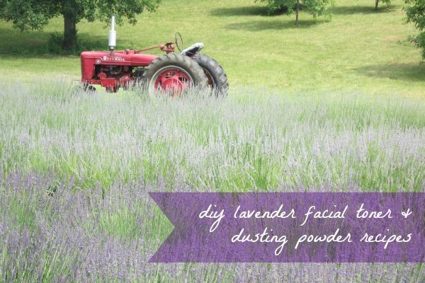 Lavender DIY as seen on Hill City Bride