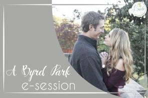 Richmond Virginia Byrd Park Engagement as seen on Hill City Bride Wedding Blog