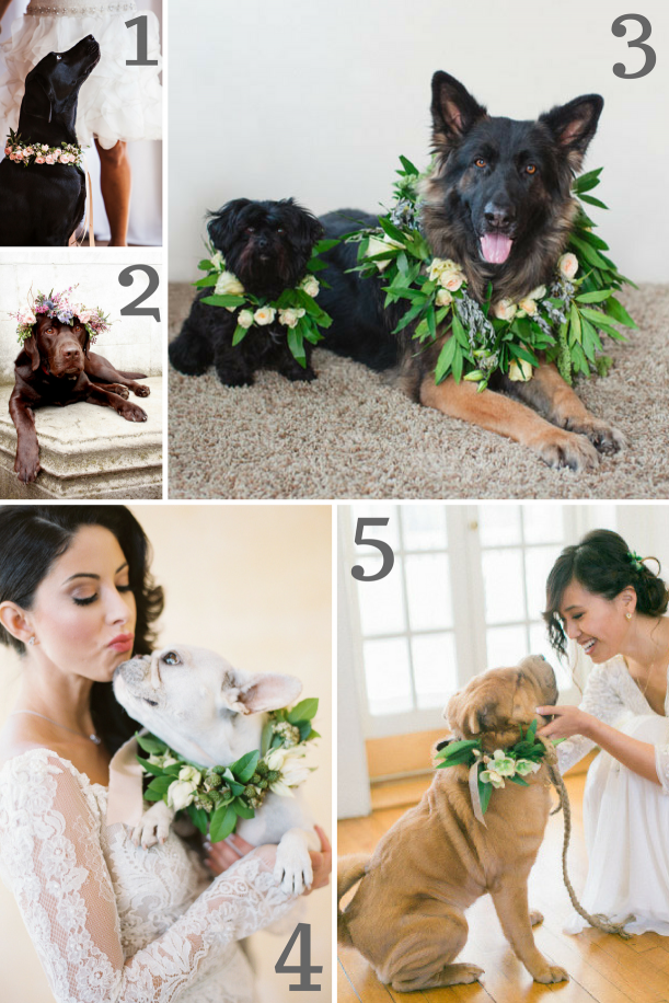 Dog Wedding Wreath Inspiration as seen on Hill City Bride