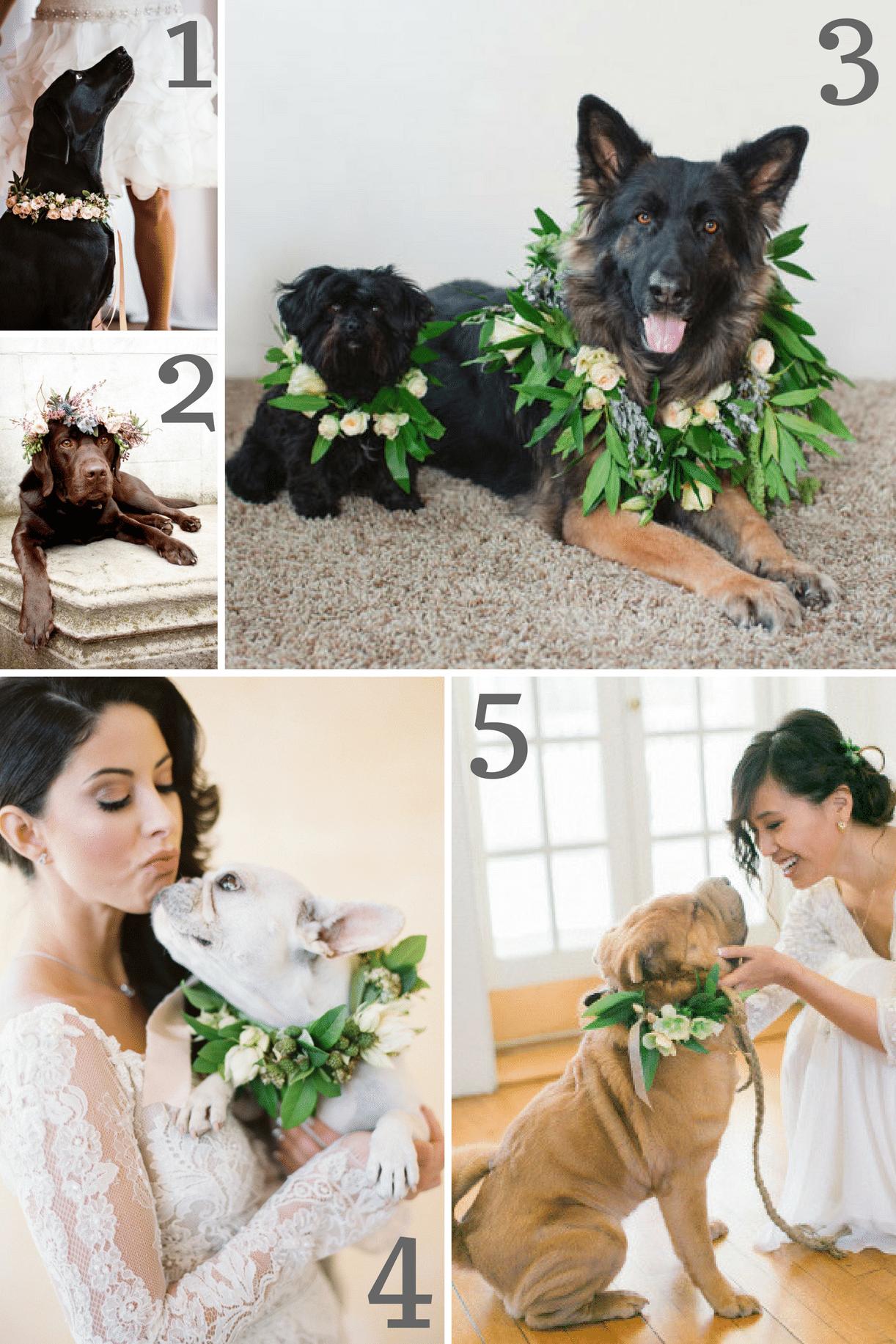 Dog Wedding Wreath Inspiration as seen on Hill City Bride