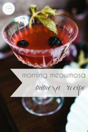 Morning Mimosa Recipe Cocktail Meowmosa as seen on Hill City Bride Virginia Wedding Blog Specialty Drink
