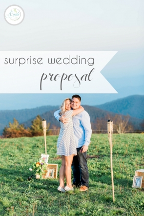 Virginia Surprise Wedding Proposal as seen on Hill City Bride Blog - engagement, engaged, story