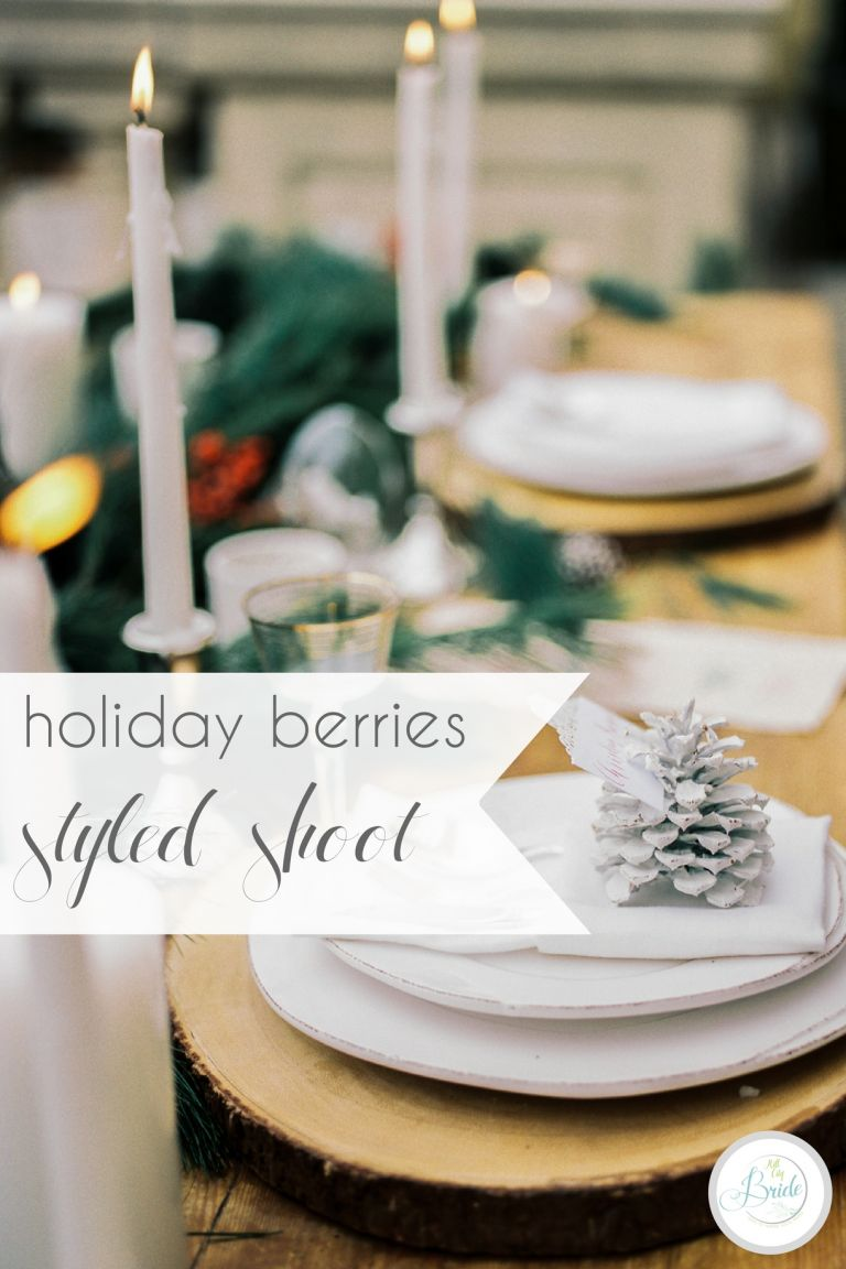 Holiday Berries Winter Styled Shoot as seen on Hill City Bride Virginia Wedding Blog