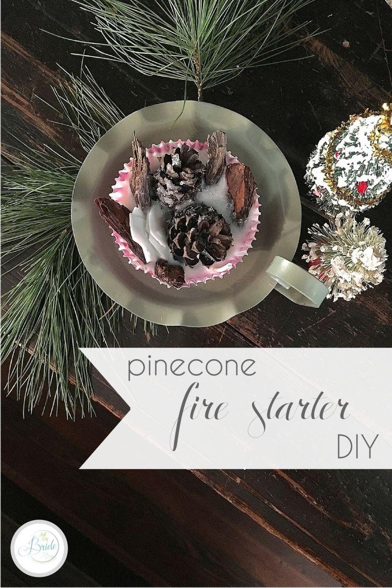 Pinecone Firestarters Pine Cone Fire Starters as seen on Hill City Bride Virginia Wedding DIY Blog