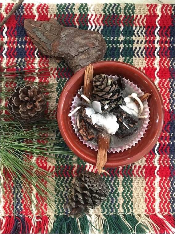 Pinecone Fire Starter DIY Pine Cone Fire Starters as seen on Hill City Bride Virginia Wedding Blog