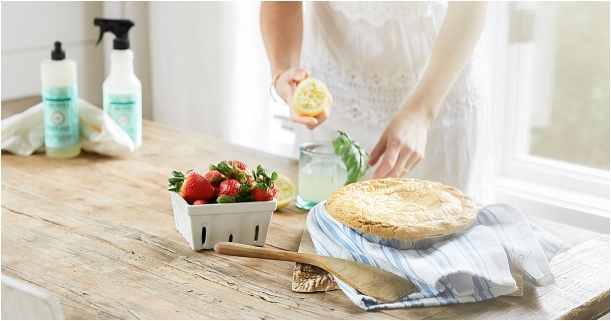 Bridal Shower Gift Idea   Hill City Bride Virginia Wedding Blog with Grove Collaborative Coupon Code