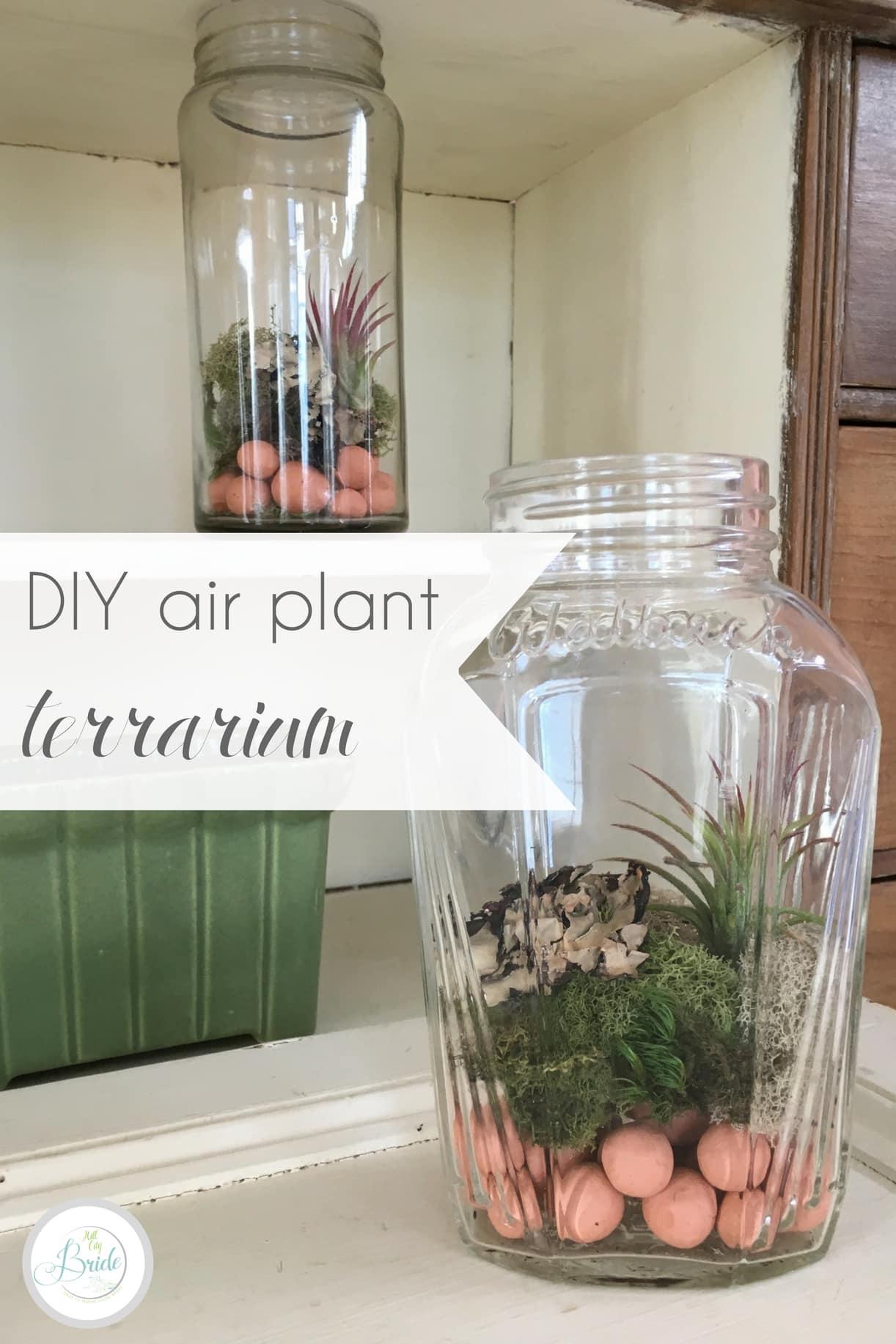 DIY Air Plant Terrarium| Hill City Bride Virginia Wedding Blog