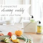 5 Cleaning Caddy Uses   Hill City Bride Virginia Wedding Blog