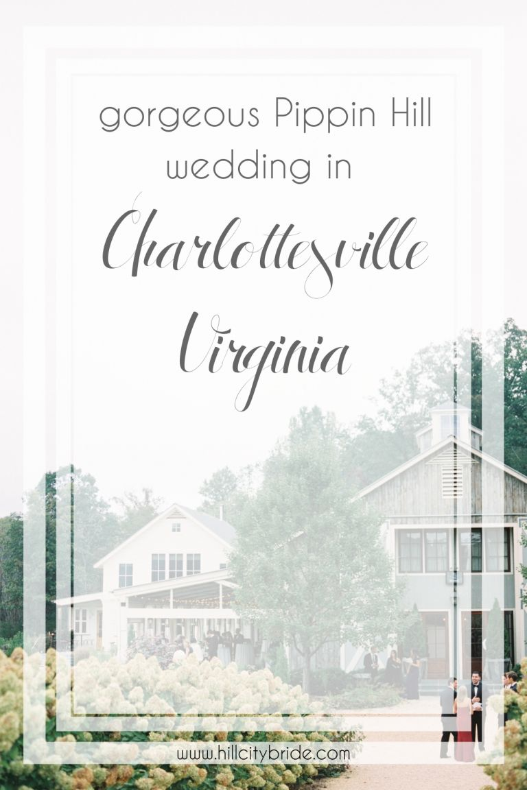 Gorgeous Pippin Hill Wedding in Charlottesville Virginia