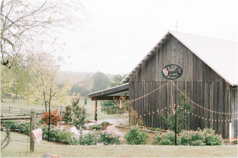 Dusty Blue Wedding Color Palette | Hill City Bride Virginia Weddings Wedding Blog | Something Blue Sorella Farms