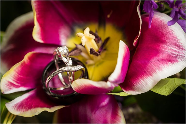 Purple Wedding at Old City Cemetery Lynchburg Virginia | Hill City Bride