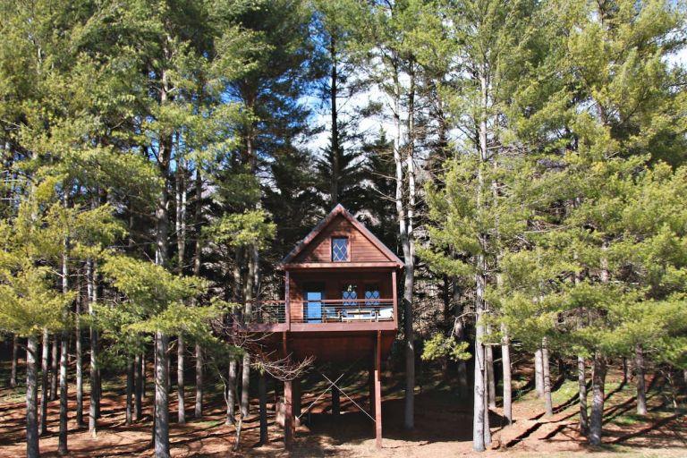 Joshua Tree House Virginia
