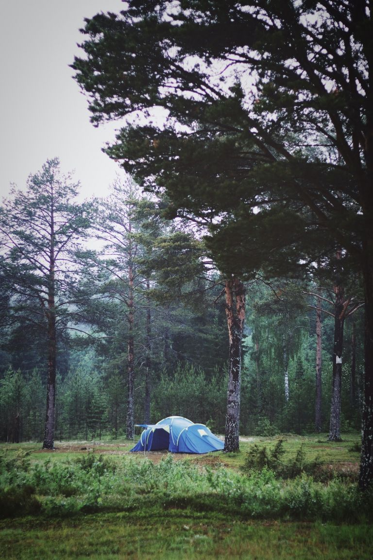 Best Free Campsites in Virginia for Tents