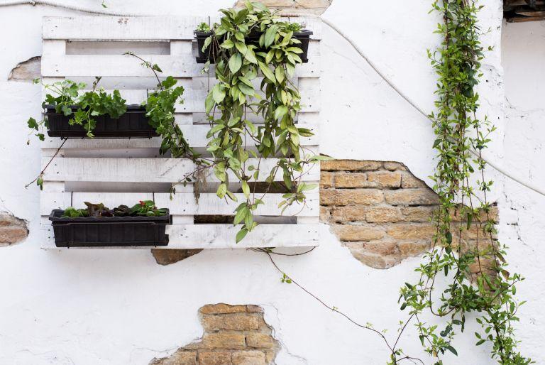 DIY Pallet Gardening Ideas
