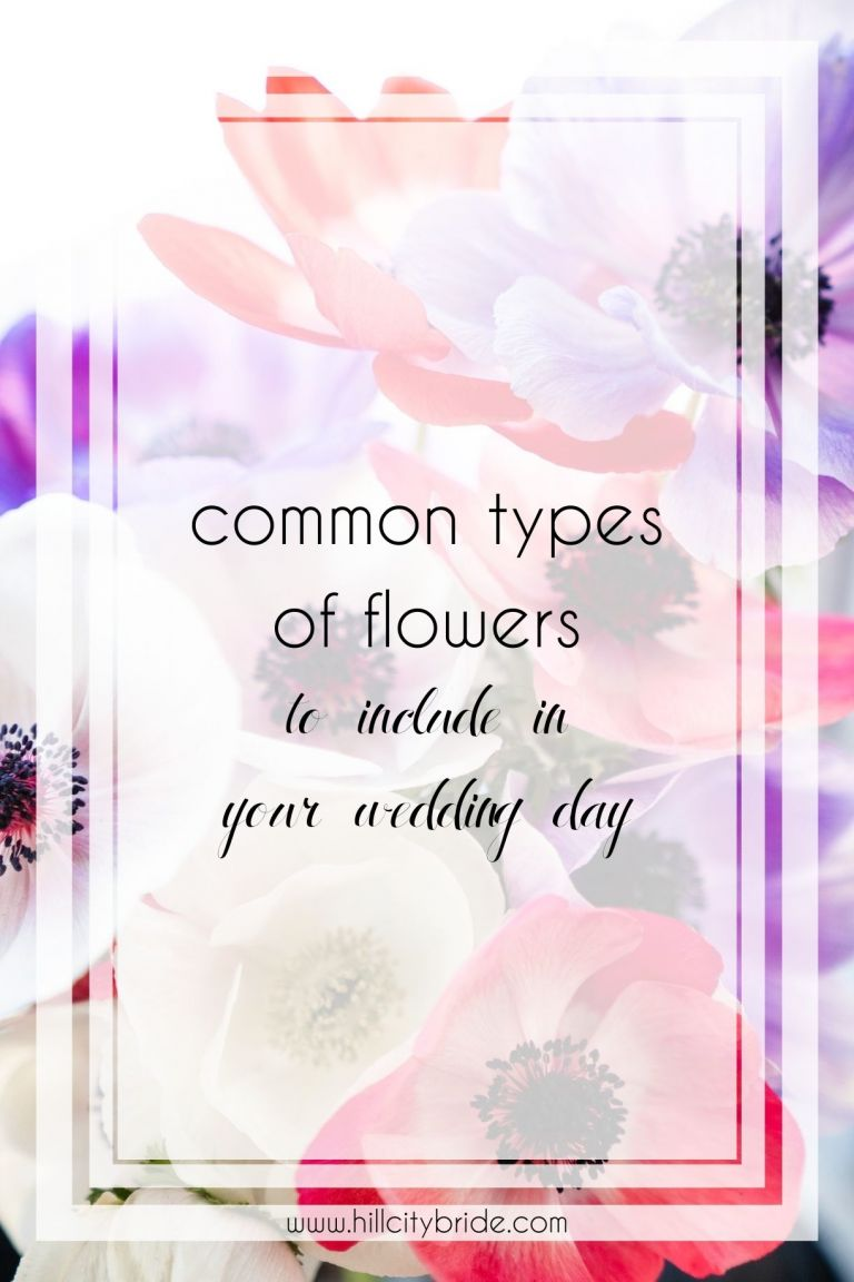 Top 8 Common Types of Flowers for an Absolutely Gorgeous Big Day