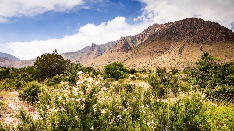 Guadalupe Mountains National Park Least Visited in USA