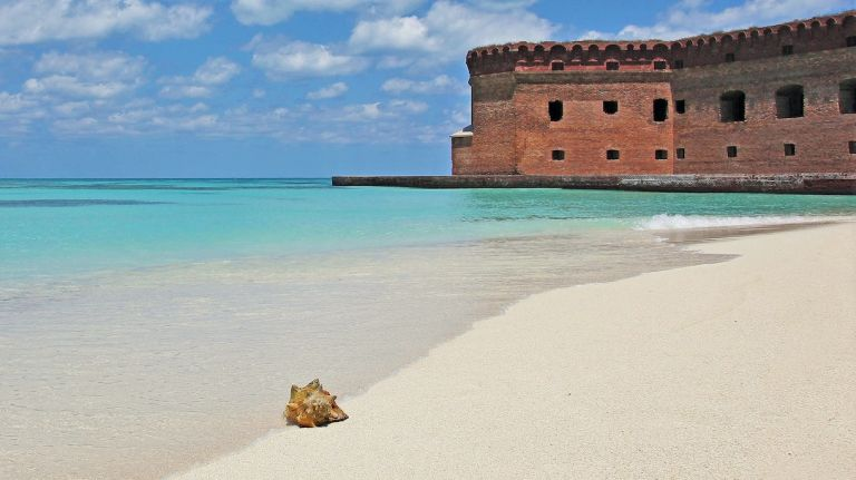 Honeymoon in Dry Tortugas National Park