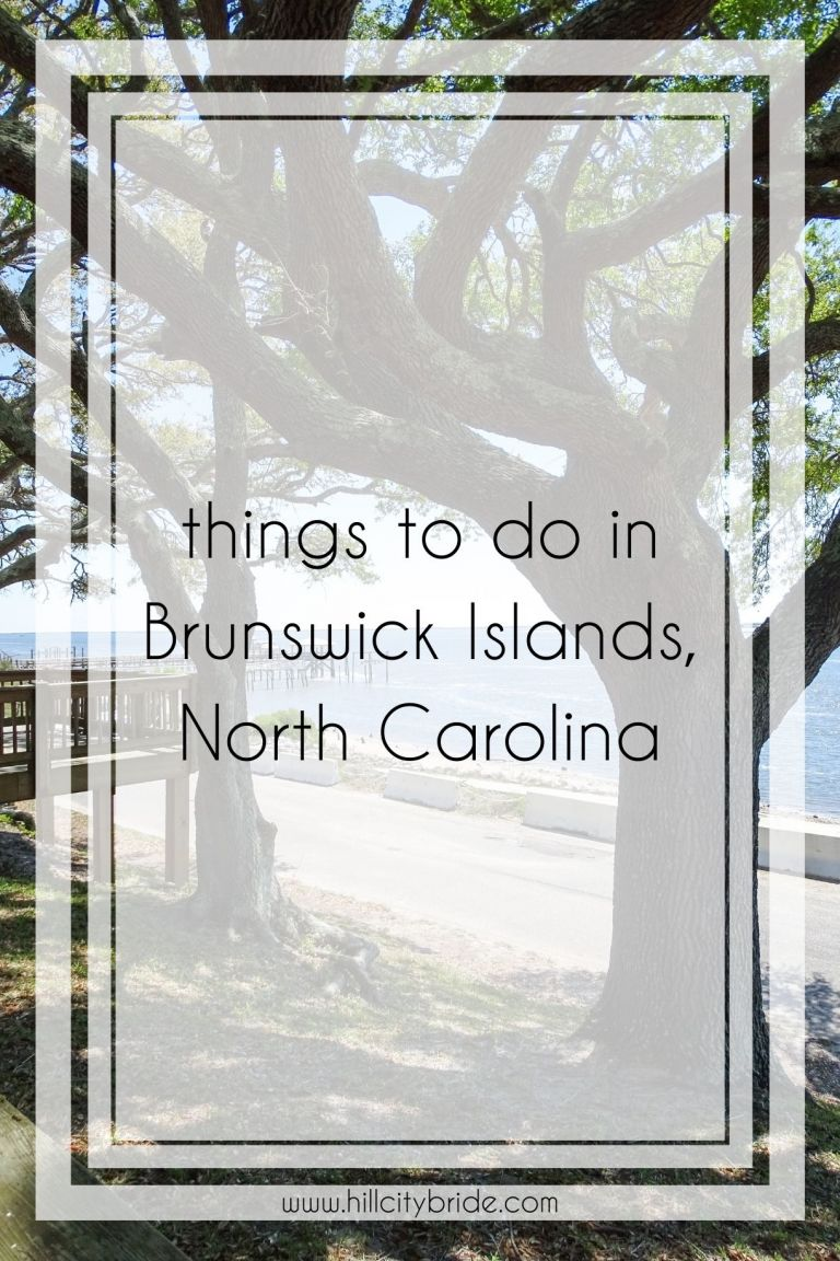 Things to Do in Brunswick Islands NC to Guarantee a Great Time